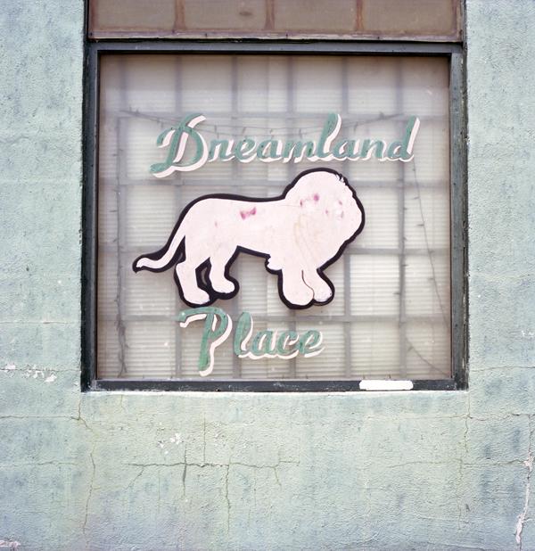 Dreamland place wall web