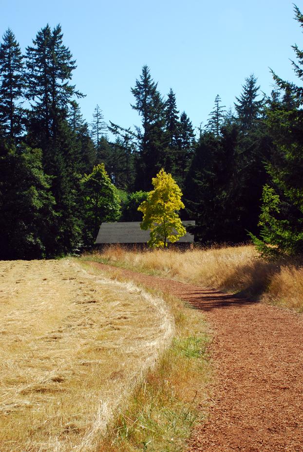 Path to barns at bloedel