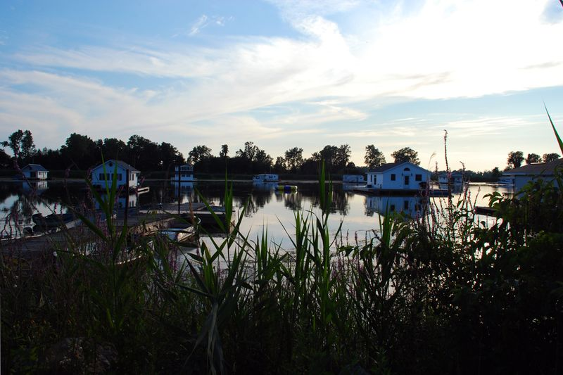 Presque isle houseboats grass
